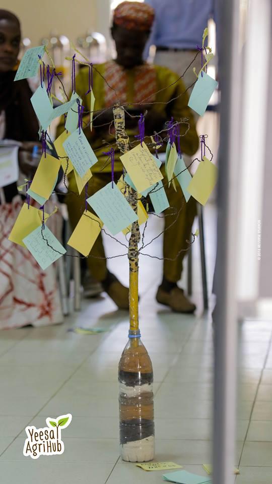 Photo eines Design Thinking Ideenbaums