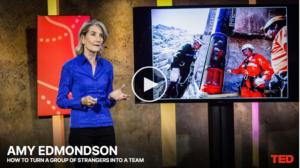 Screenshot des Covers des Youtube-Videos zum Ted Talk von Amy Edmondson