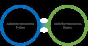 Foto mit dem blauen Kreis und dem grünen Kreis, wie sie sich miteinander verbunden haben