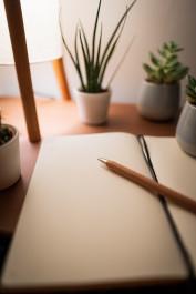 Foto mit einem Notizblock und darauf ein Stift, im Hintergrund stehen ein paar grüne Pflanzen