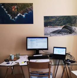 Foto mit einem Schreibtisch, einem Laptop, einem Bildschirm, Tastertur,Maus und Papiere