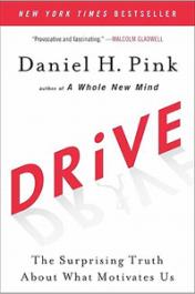"""Foto vom Cover """"Drive: Was sie wirklich motiviert"""""""
