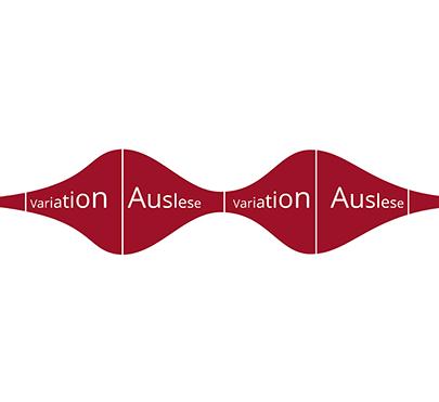 Graphik des Übergangs von Innovation und Auslese.